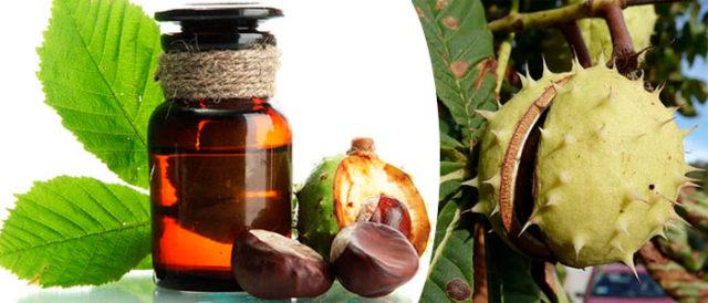 При лечении следует учитывать, что средства на основе конского каштана замедляют свертываемость крови