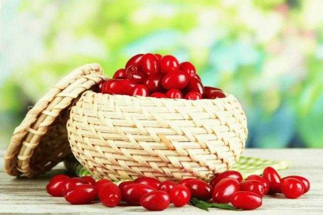 Плоды и косточки кизила содержат биологически активные вещества