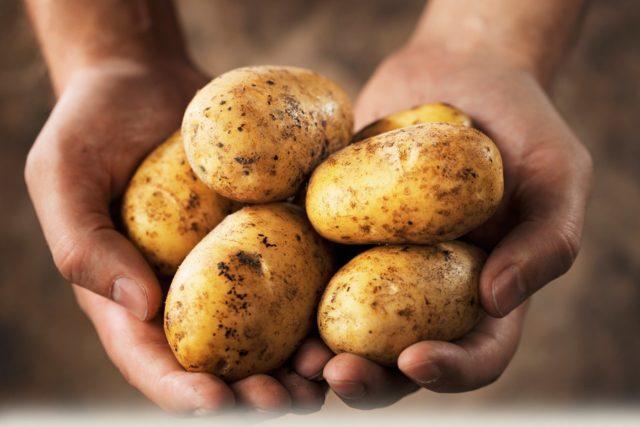 Эффект достигается благодаря обволакивающим и болеутоляющим свойствам картофельного сока