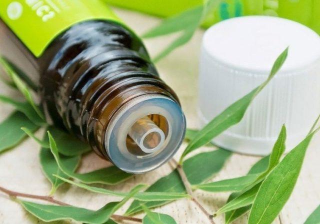 Масло чайного дерева обладает антисептическими и заживляющими свойствами и показано пациентам с ранней стадией болезни